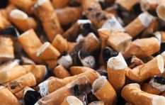Study shows that dropped cigarette butts harm the environment