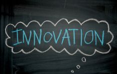 How your business (whether new or established) can learn to innovate and grow