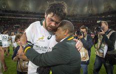 'Under Allister Coetzee we started celebrating losses when we came close'