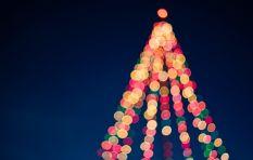 702 festive season show schedule