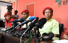 Investigation proves EFF and Malema benefitted from VBS heist - analyst