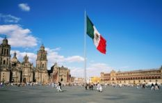 Why South Africa could be the next Mexico. If we're REALLY lucky.
