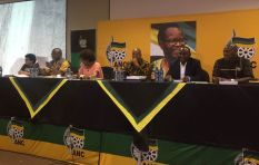 Some ANC NEC members want Zuma no confidence motion on agenda - reports