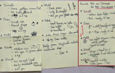 'Husband-proof' grocery list goes viral, could save your relationship!
