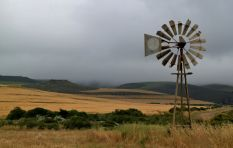 'Evicted farm worker was offered alternative housing but rejected it'