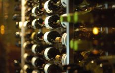 Forget exports, SA wine could be a cash cow right here at home
