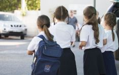 Increased school pregnancy rates linked to girls being preyed upon  - researcher