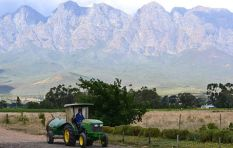 Solms-Delta farmworkers bucking the trend in transformation