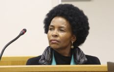 Former minister slapped with personal costs order in District Six ruling