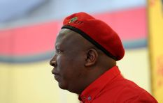 """We must eat this elephant called the ANC piece by piece"" - Julius Malema"