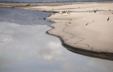 [LISTEN]  Economist predicts 5% decline in WC's GDP if drought persists