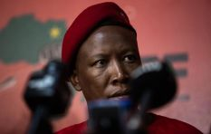 NPA to prosecute Malema's associates over alleged tender fraud