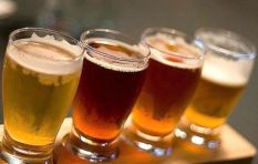 A beer lover's guide to craft beer
