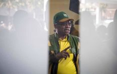 ANC's internal mechanisms have been paralysed - Brown
