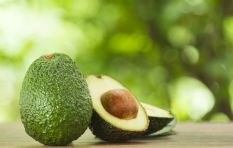 Avocado prices reach all-time high