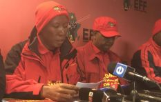 EFF intends to do independent investigation into the Gupta's and state capture