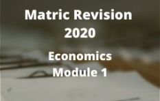Gauteng Matric Revision 2020: Economics Module 1