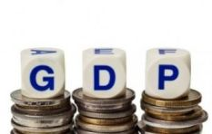 Department of Small Business Development's role as GDP declines