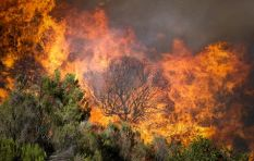#CapeTownFire - Day 3 in the Southern Peninsula