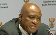 Court sets aside appointment of Hawks head Berning Ntlemeza