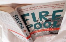 Hedley Twidle's book 'Firepool' describes odd and beautiful anecdotes of SA life