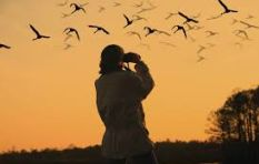 SA to be represented at The Champions of the Flyway Project