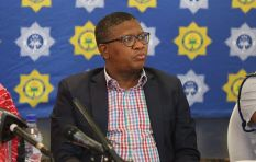 Mbalula evading fundamental questions around his Dubai trip - Karima Brown