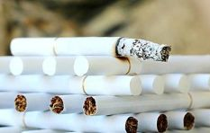 'If Sars is not doing its job the illicit cigarette trade takes advantage'