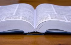 [LISTEN] Are dictionaries available in all indigenous languages in SA?