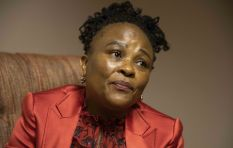 Public Protector to challenge Estina Dairy Farm High Court ruling