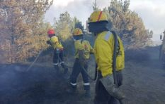 Investigation report: Knysna fire sparked by 'human activity'