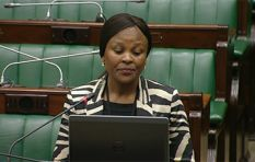 Public Protector CEO resignation raises questions