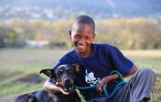 Cape Town project pairs vulnerable teens with shelter dogs to empower both