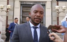 Government must share crime intelligence to end attacks in Joburg - Maimane