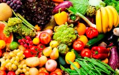 'There needs to be an urgent review of food management safety in SA'