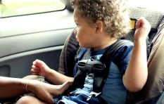 Car seat usage less than 10% in SA, says AA