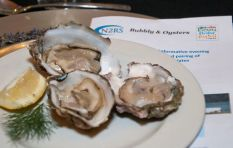 All systems go for Knysna Oyster Festival, organiser explains