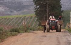 Farmers organisation wants drought declared a national disaster