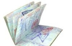 Introducing e-visas: 'Simple way to drive growth and create jobs in SA'