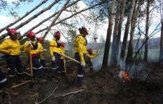 South African firefighters in Canada downed tools over a pay dispute