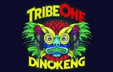 Tribe One Festival : Taxpayers money not lost
