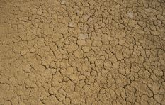 Scientist attributes Western Cape drought to climate change