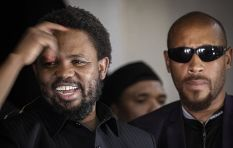 Technicalities stand in way of FF Plus's bid to have BLF deregstired