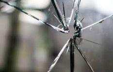 Household crime up by 5%, says Stats SA