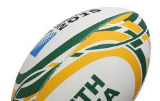 Saru pressed to take action against its CEO, Jurie Roux