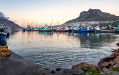 Hout Bay fisheries officials forced into hiding after violent protests