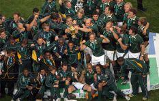 'It's exciting to see new players in Springbok squad'