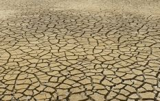 Weather data suggests drought, heat and a poor harvest likely across SA