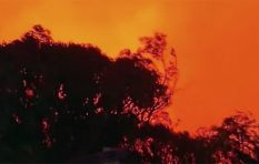 Australian bushfires are a climate catastrophe, warns Sydney professor