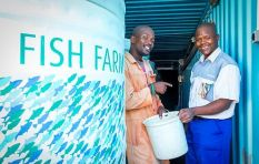 Meet Alan Fleming, social entrepreneur, farming fish in the Philippi Village